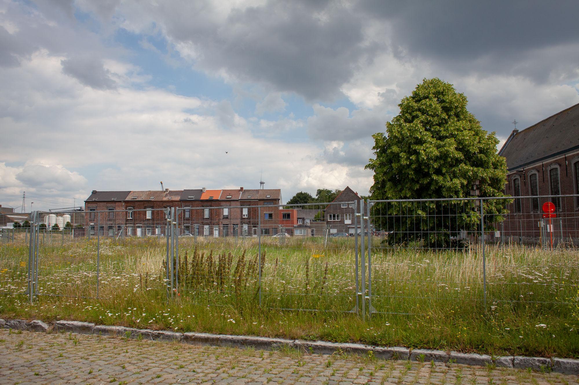 2019-07-02 Muide Meulestede prospectie Wannes_stadsvernieuwing_IMG_0374-2.jpg