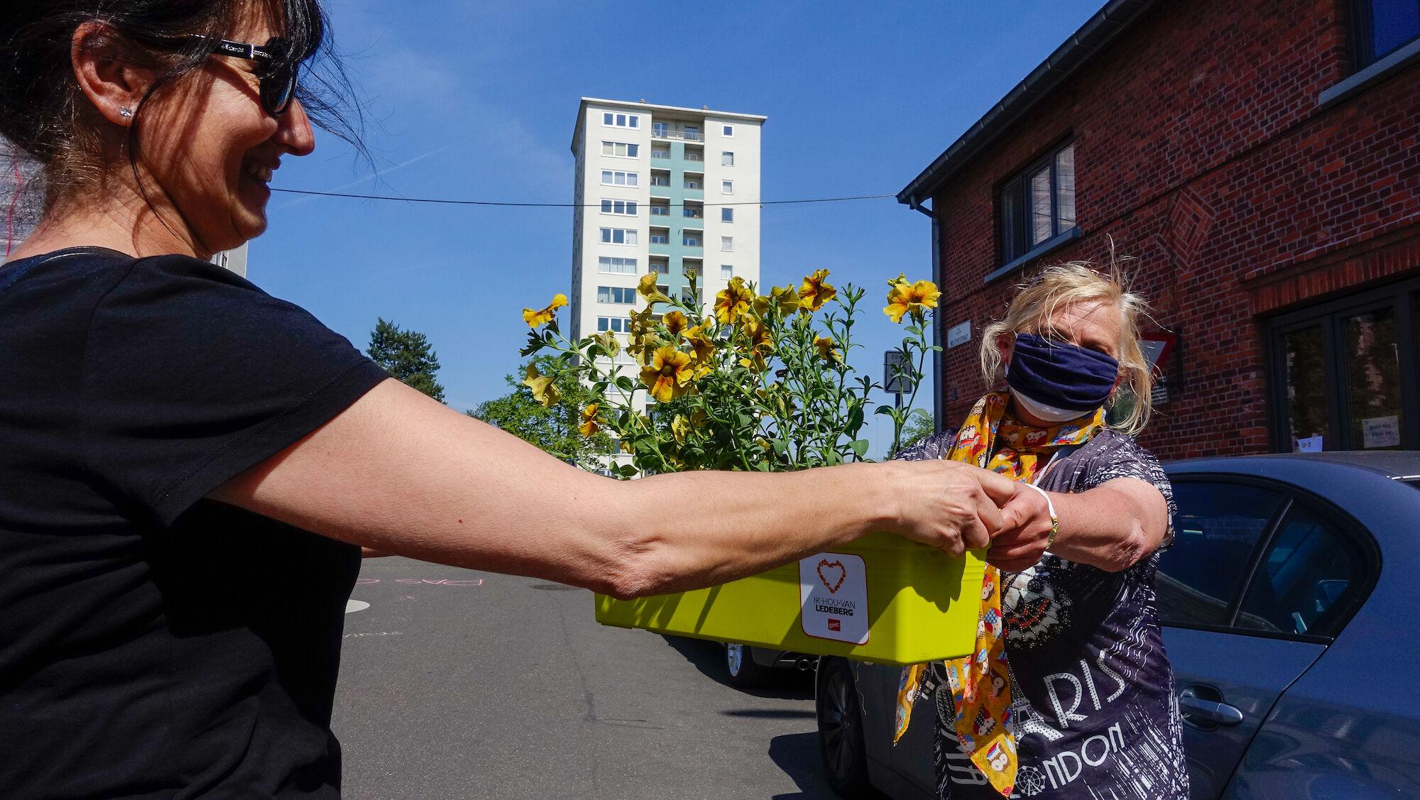 2020-05-29 Ledeberg_Dag van de Buren_bloemen__DSC0438.jpg