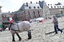 20080906_Sint-Pieters_Trekpaardenfeest.jpg