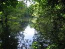 116 Park De Vijvers (4).jpg