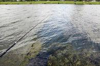watersportbaan (6)©Layla Aerts.jpg