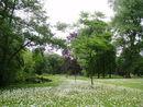 016 Maaltebruggepark (1).JPG