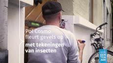 19_01184 60S Gentenaar Pol Cosmo.mp4