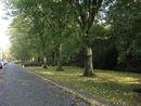 009 Groenzone Van Ooteghemstraat (2).jpg