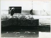 Gent: Mussenstraat 28: Fontein, 1979