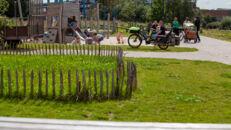 20210817_Oude Dokken_Houtdok_Openbaar Domein_Zitbanken_groen_wandelaars_fietsers_0035.jpg