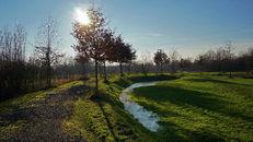 Groene Velden  (winter)