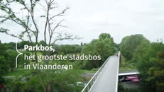 Parkbos youtube.mp4