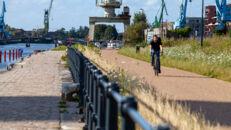 20210817_Oude Dokken_Houtdok_Openbaar Domein_Zitbanken_groen_wandelaars_fietsers_0049.jpg