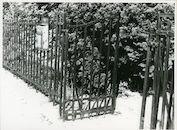 Gent: Vaderlandstraat 43: Hek, 1979