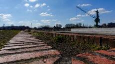 20210817_Oude Dokken_Houtdok_Openbaar Domein_Zitbanken_groen_wandelaars_fietsers_0015.jpg