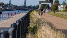 20210817_Oude Dokken_Houtdok_Openbaar Domein_Zitbanken_groen_wandelaars_fietsers_0050.jpg