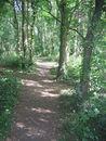 116 Park De Vijvers (5).jpg