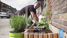 19_00959 60S Gentenaar geveltuinman youtube.mp4
