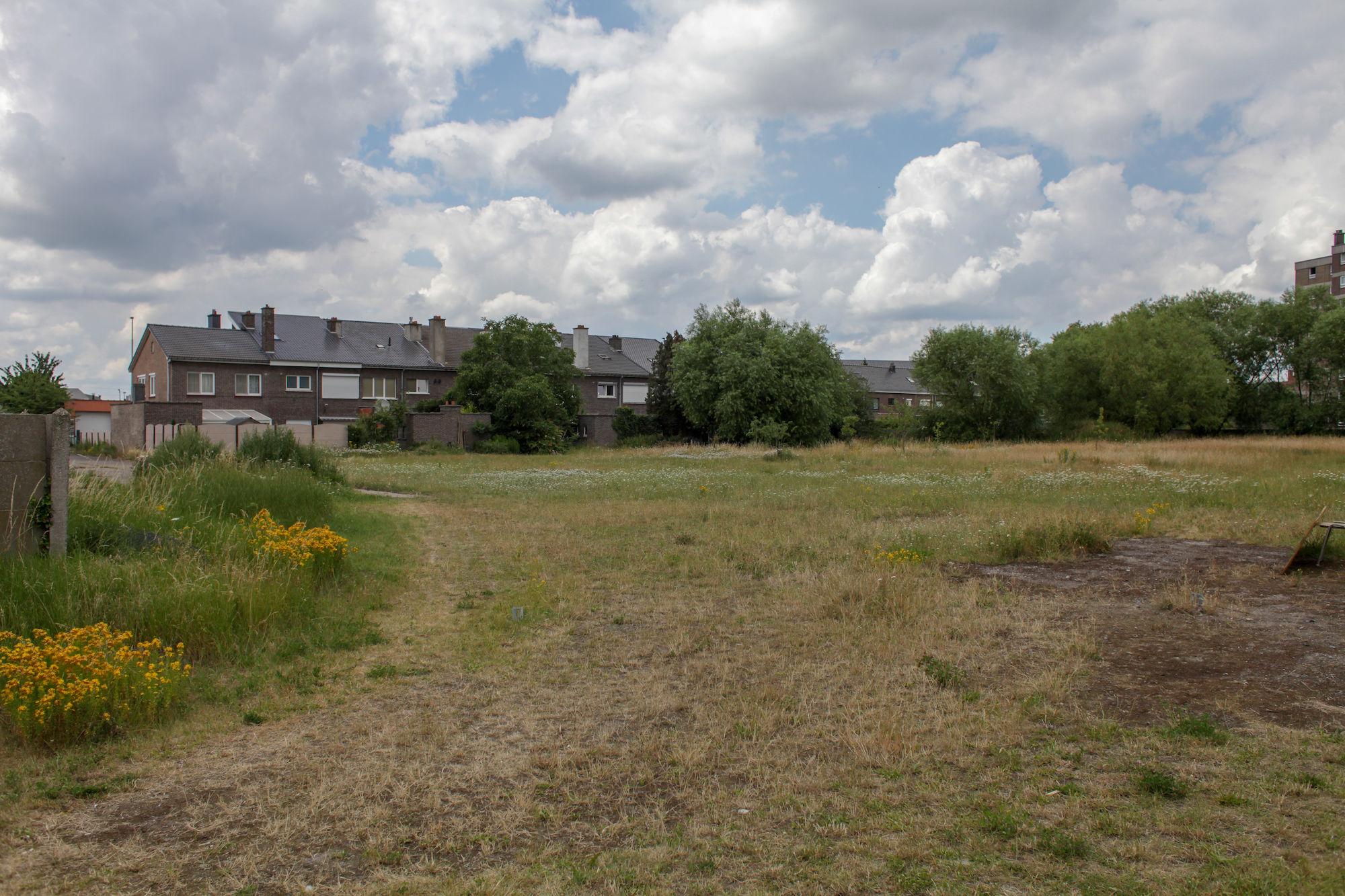 2019-07-02 Muide Meulestede prospectie Wannes_stadsvernieuwing_IMG_0337-2.jpg
